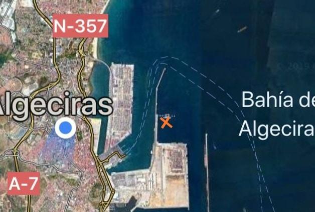 Aparece otra ballena muerta en aguas del puerto de Algeciras