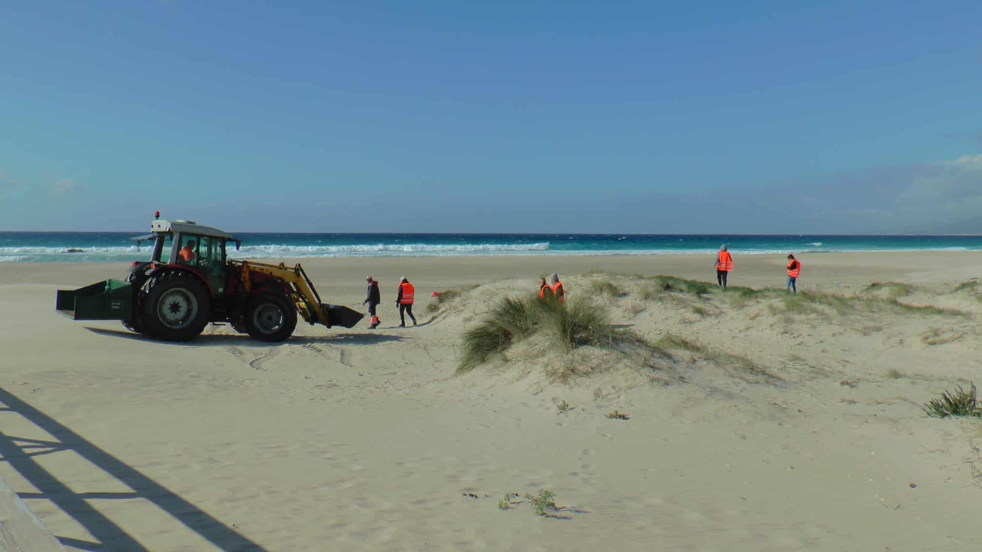 Ayuntamiento y Diputación de Cádiz redoblan esfuerzos para el mantenimiento y conservación del litoral tarifeño