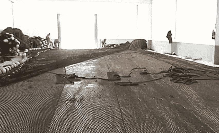 Los almadraberos de Tarifa comienzan a preparar el laberinto