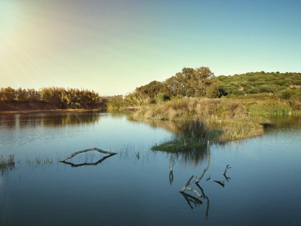 Cepsa celebra el Día Mundial del Medio Ambiente recordando su compromiso con la sostenibilidad