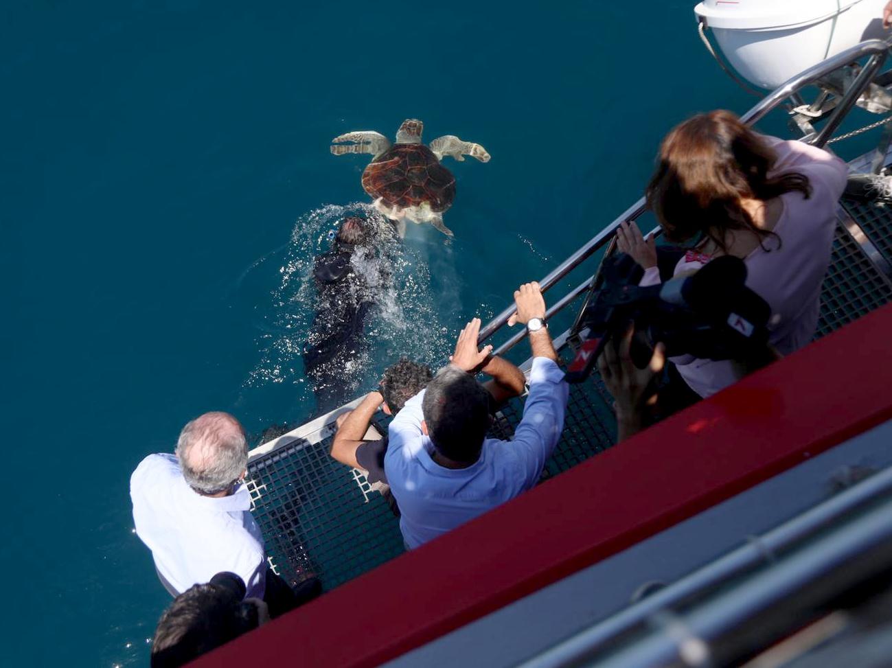 La Junta retomará la colaboración con el Aula del Mar para la recuperación de especies amenazadas