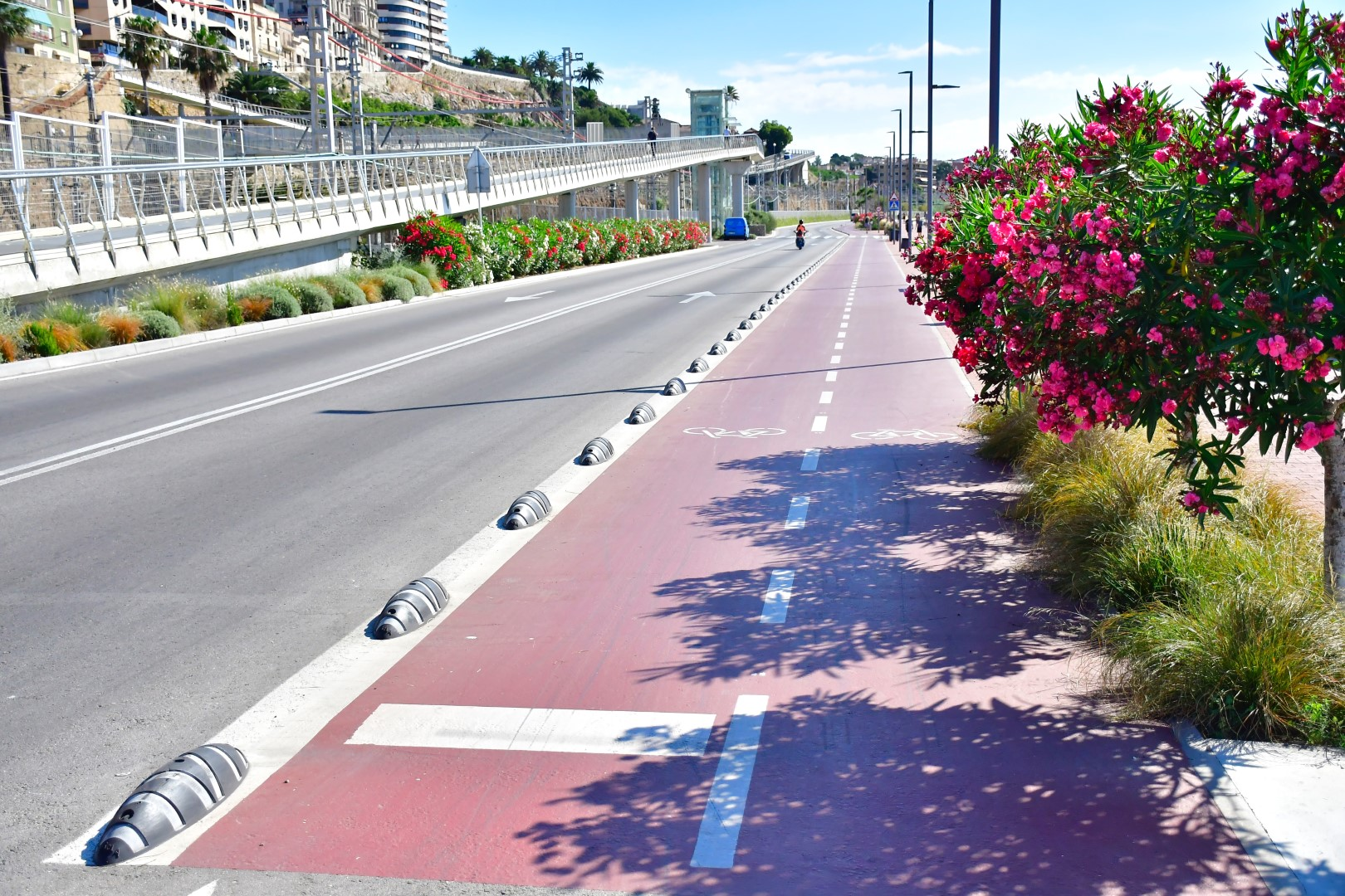 El Puerto de Tarragona presenta el nuevo Plan de Sostenibilidad Agenda 2030 para reducir su impacto ambiental
