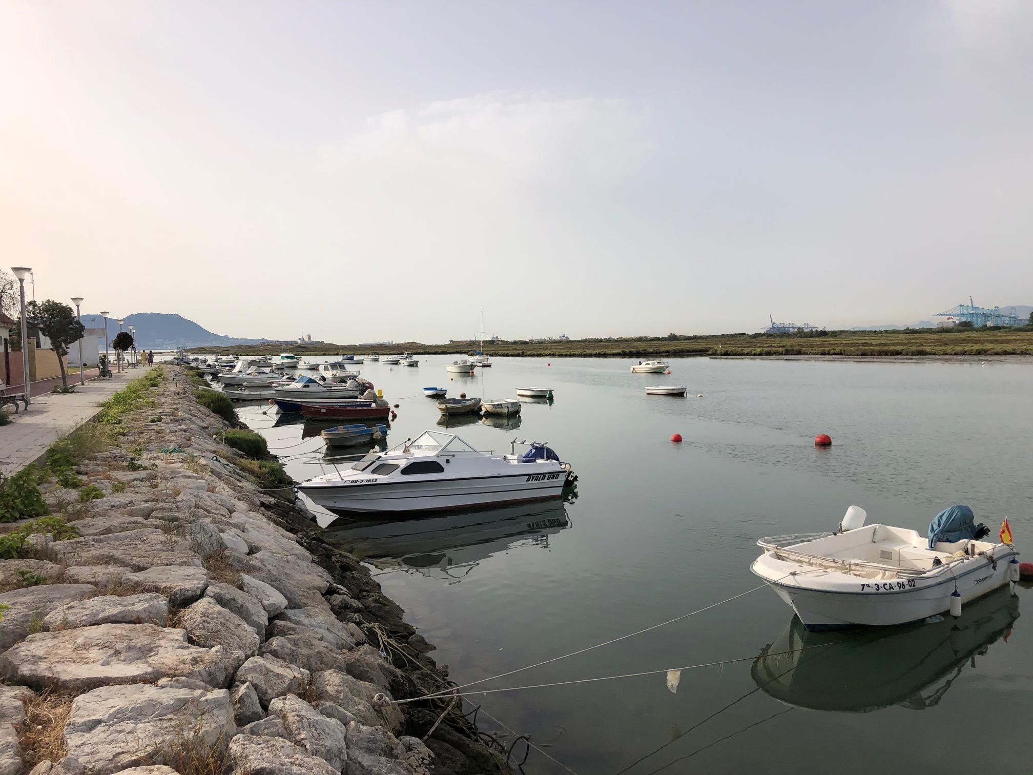 La Junta de Andalucía tramita la Autorización Ambiental para el proyecto de pantalanes en la desembocadura del río Palmones