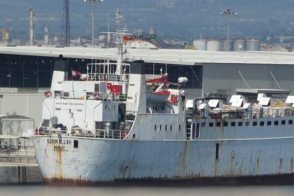 Denuncian que 2600 vacas y terneros enfermos que salieron en diciembre de España navegan a la deriva por el Mediterráneo