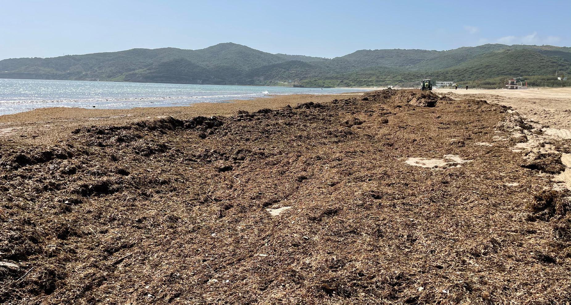 El Ayuntamiento de Algeciras cumple con su dispositivo en las playas para Semana Santa