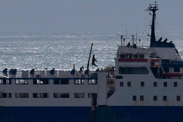 Igualdad Animal denuncia a España ante la Comisión Europea por la gestión de los buques Karim Allah y Elbeik