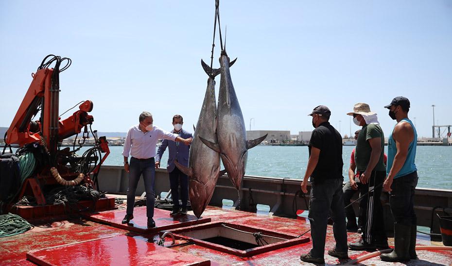 Bendodo subraya el apoyo del Gobierno andaluz a las empresas atuneras de Cádiz