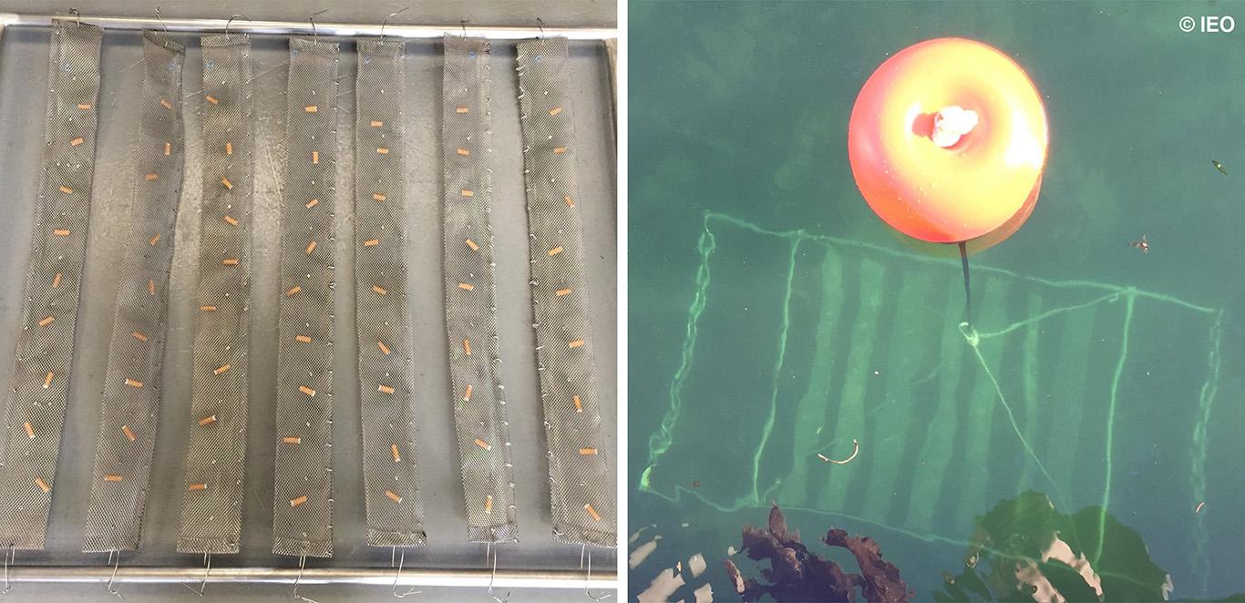 Las colillas arrojadas en playas pueden suponer una fuente de metales pesados en el océano