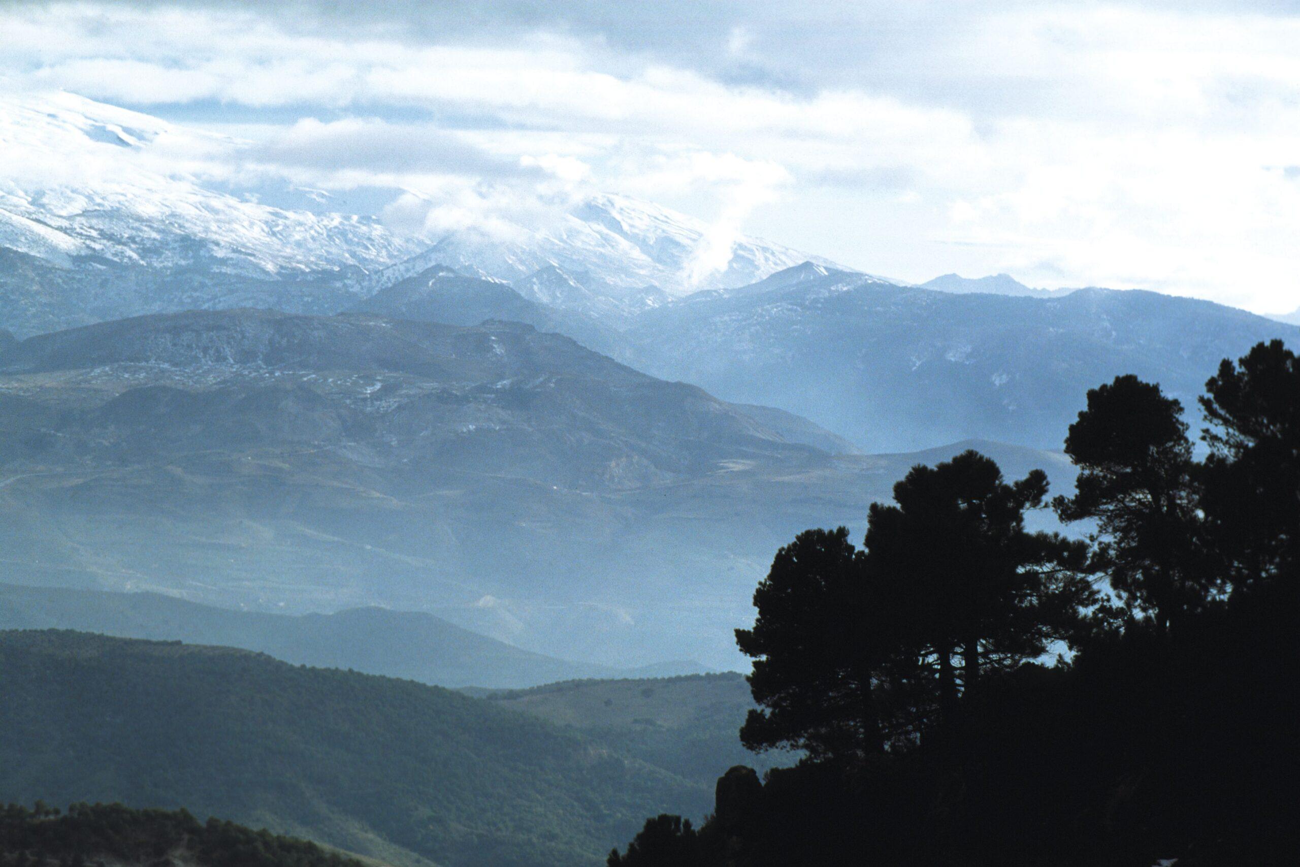 La Junta organiza actividades en espacios protegidos para difundir el gran patrimonio ambiental de Andalucía