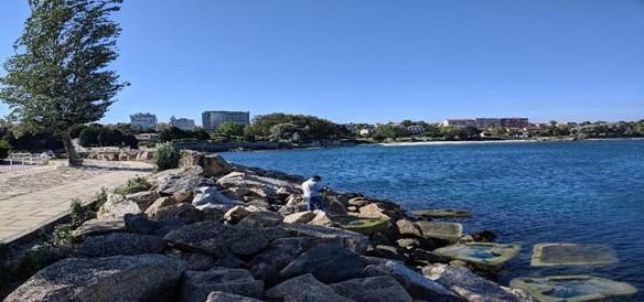 """""""Living Ports"""" obtiene financiación de la UE para diseñar en el Puerto de Vigo infraestructuras que fomentan la biodiversidad"""