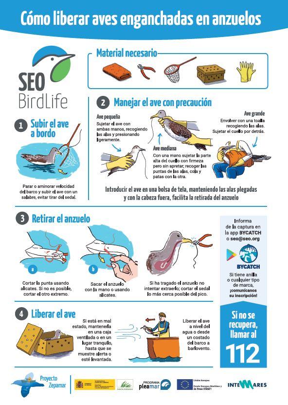 SEO/BirdLife alerta sobre las aves que quedan atrapadas en las artes de pesca
