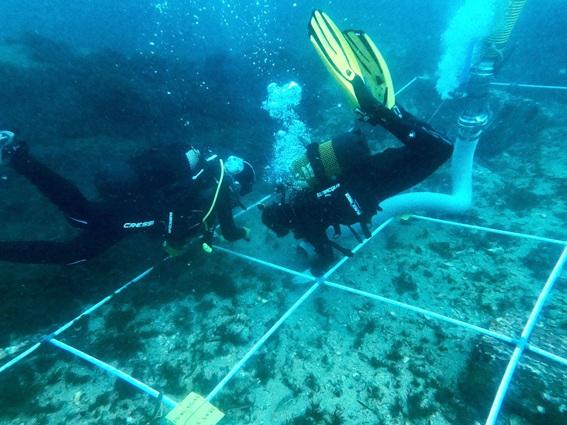 Investigadores de la UCA lideran el proyecto 'HERAKLES' para conocer el patrimonio arqueológico y subacuático en el Estrecho